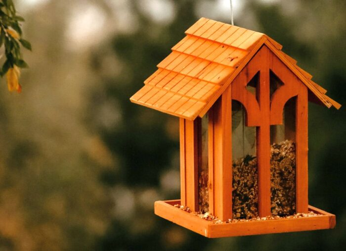 The Best Birdfeeders: A Comprehensive Guide